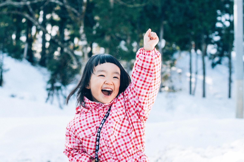 日本のインターネットの天下は「イラスト」や「写真」が取るかもしれない